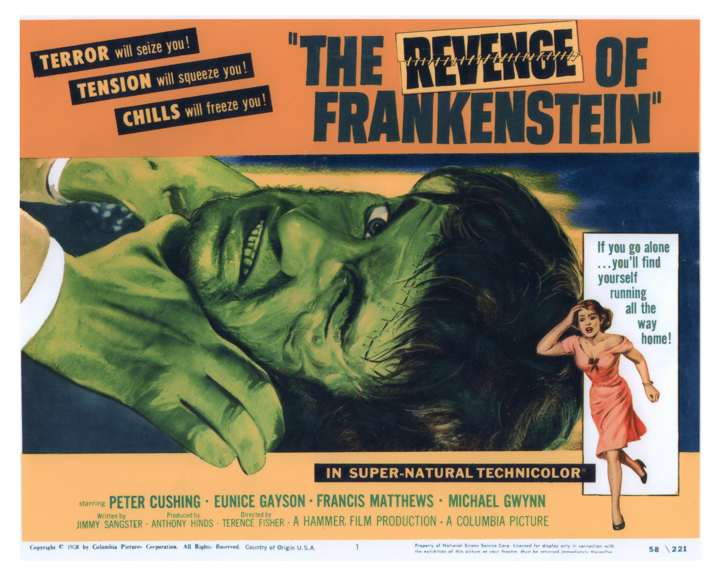 frankenstein essays on revenge Essay on frankenstein: free examples of essays, research and term papers examples of frankenstein essay topics, questions and thesis satatements.